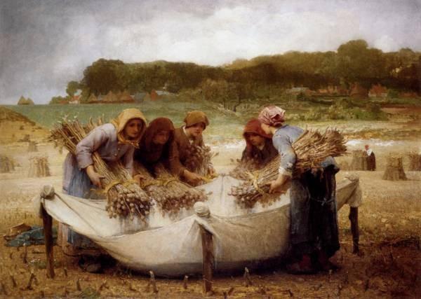 The Poppy Harvest